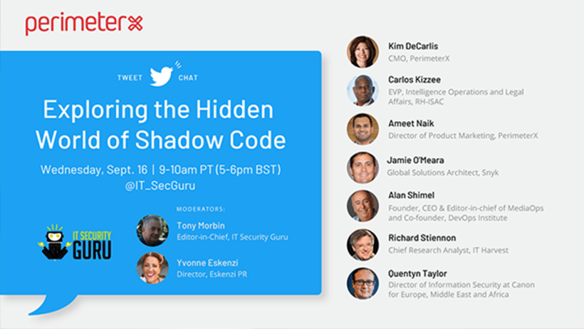 Exploring the Hidden World of Shadow Code